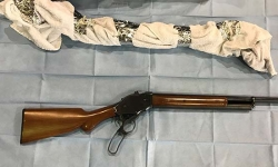 Police seize firearms during Belconnen search warrant