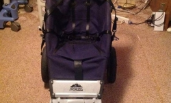Help police locate special needs stroller