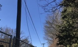 Police warn thieves risk death when stealing live powerlines